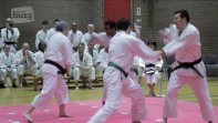 British Shorinji Kempo Anniversary in Chiswick