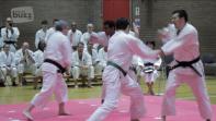 British Shorinji Kempo Anniversary in Chiswick