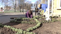 From Flagging to Fabulous! The Flagpole Garden Gets A Makeover