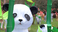 Chinese Lantern Festival Comes To Chiswick House