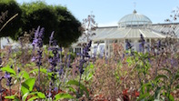 Vacancies for Green-fingered Gardeners at Chiswick House