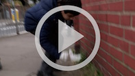 Grove Park Primary Help Keep Chiswick Clean!