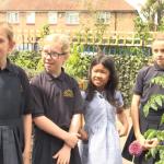 Belmont School Garden Blossoms With Creativity
