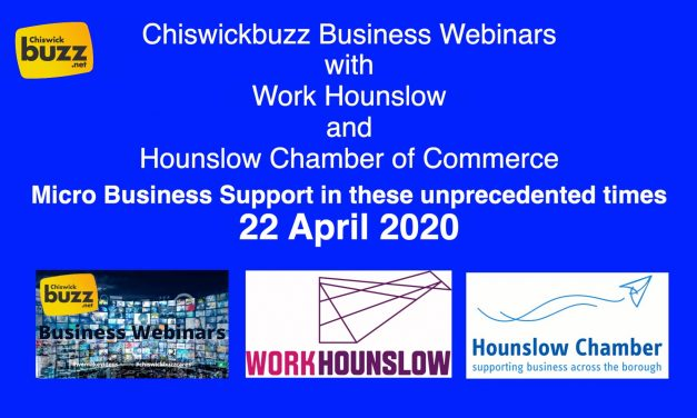 Business Webinar – Micro Business Support In These Unprecedented Times